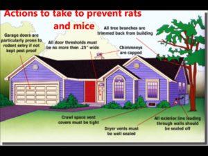 pest exclusion