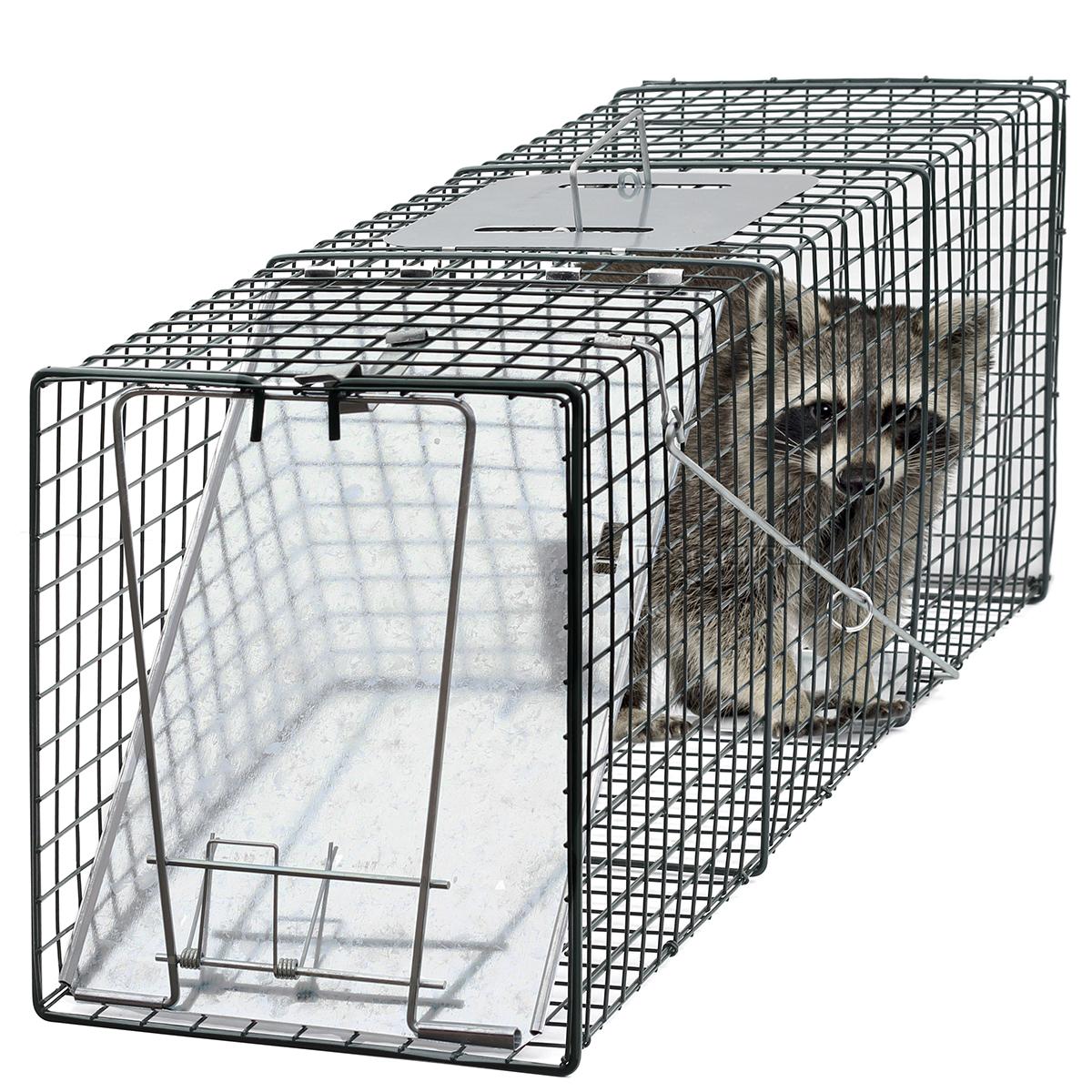 humane trap